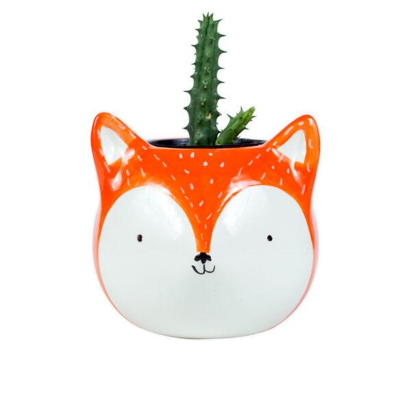 cachepot raposa