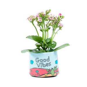 cachepot good vibes