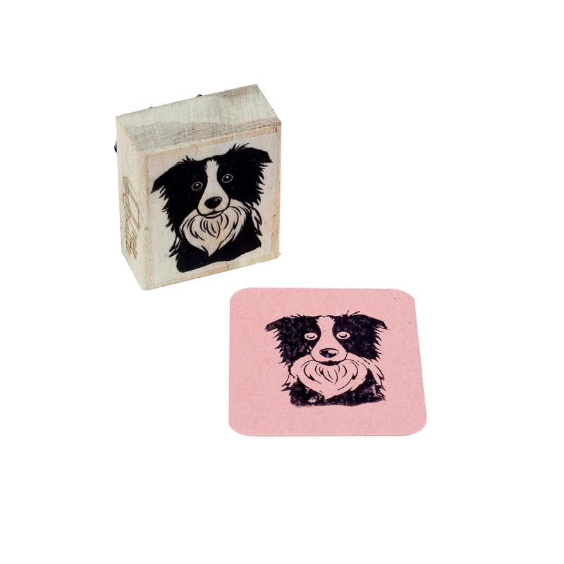 carimbo border collie dog
