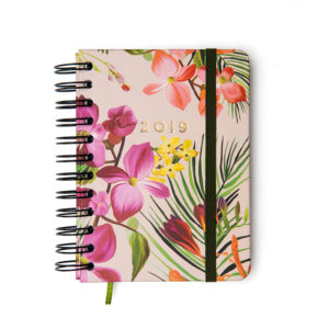 Agenda Floresta Tropical 2019 Dia