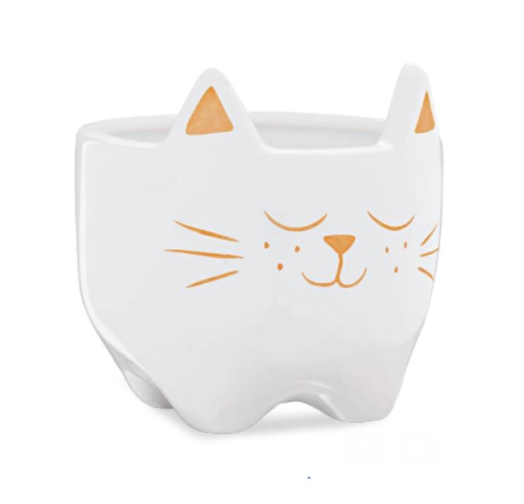 cachepot gato