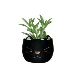 Mini Cachepot Gato