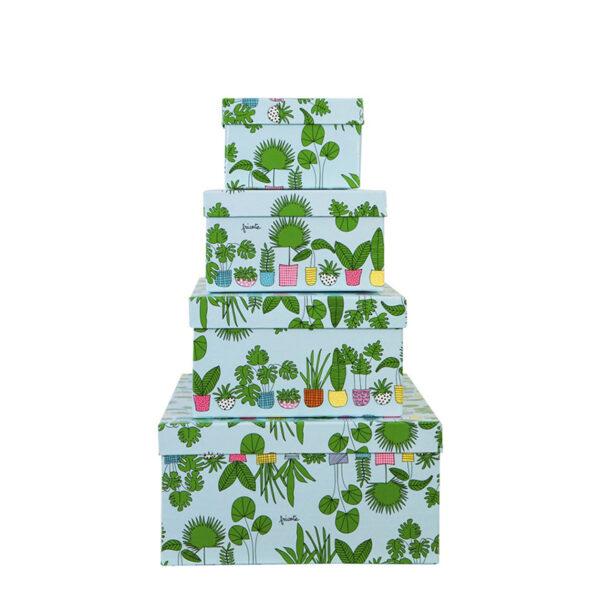 caixa plantas
