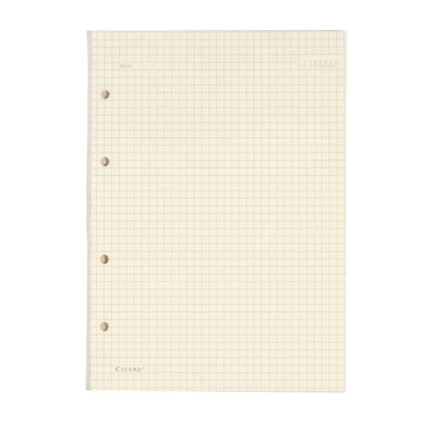Refil Caderno Argolado Quadriculado